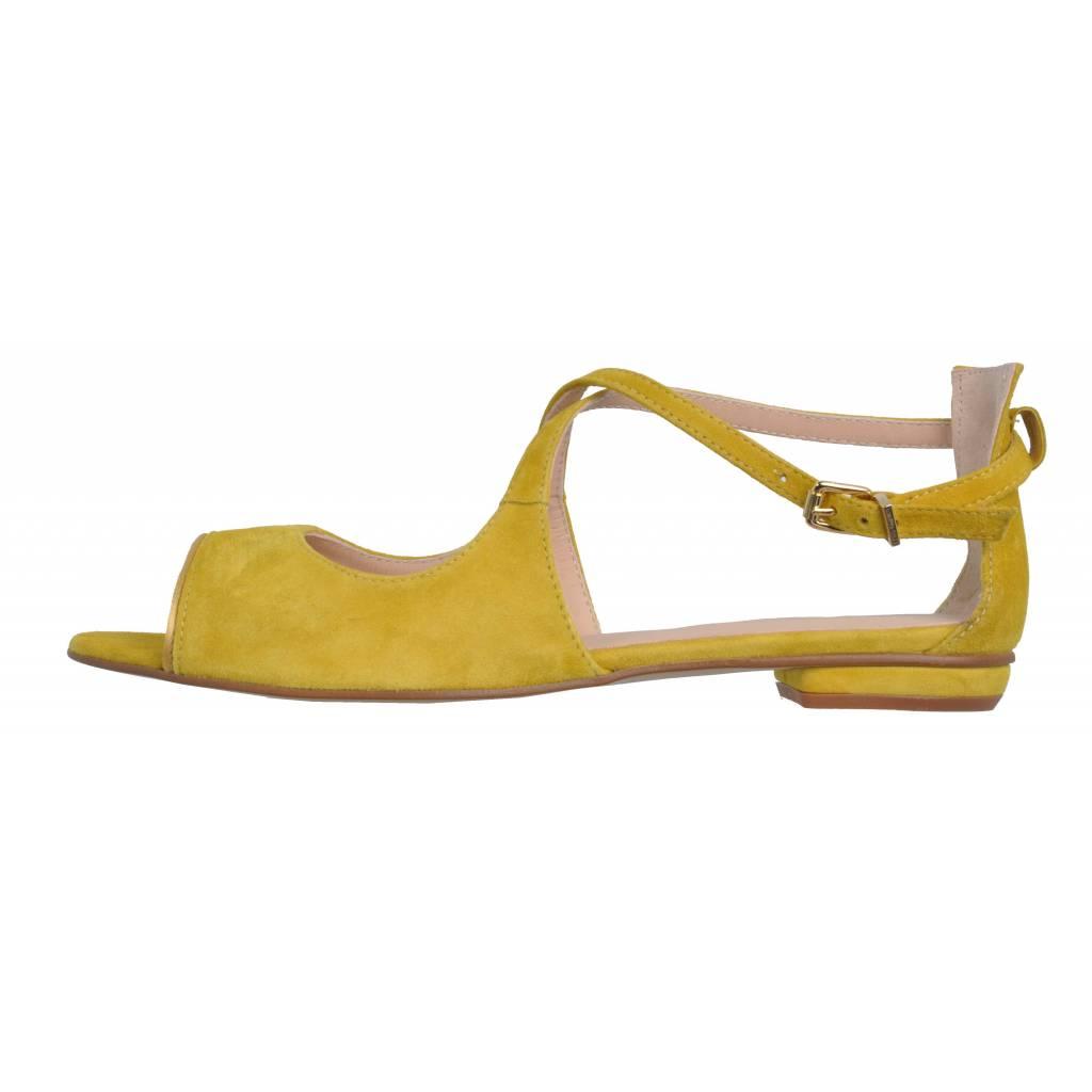 Zapatos Online 706 Martinelli Abigail Zacaris 6452a Amarillo vmN8wn0